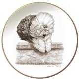 Laurelwood Plate Old English Sheepdog 2013