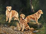 Golden Retriever Dog Art Picture