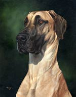 great dane dog art picture