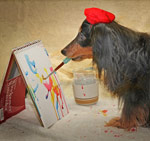 Hallie Dachshund Dog Painter